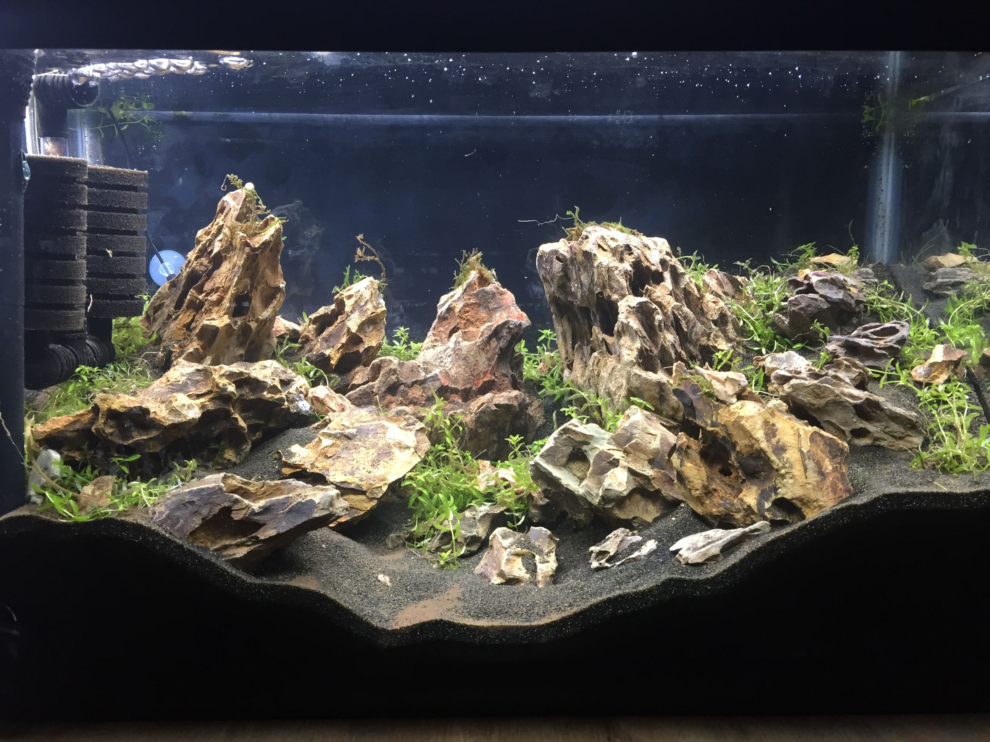 Dragon Stone for Aquascapers | Discus.com