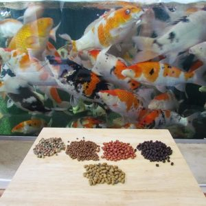 Medicated Fish Foods